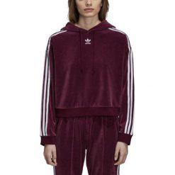 Bluza adicolor damska Bluzy damskie Kolekcja zima 2020
